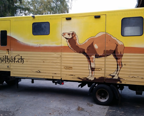 illustration fahrzeugbemalung kamelhof
